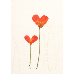 Heartflowers card 2 Mohnflower