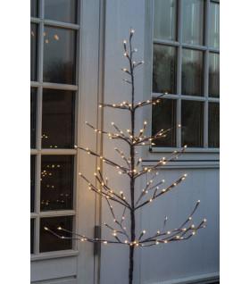 Alex Tree H1,2m+5m